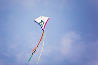 Kite on sea beach