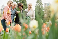 Mature women discussing landscaping plans (thumbnail)