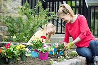 Mom and 5 year old daughter planting flower bed (thumbnail)