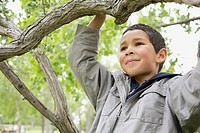 Male elementary student sitting in tree