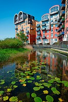 Apartments at the Greenwich Millennium Village, Geenwich Peninsula, London UK