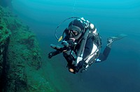 Diver and Amphipod (Acanthogammarus victorii), Lake Baikal, Siberia, Russian Federation, Eurasia