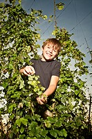 Boy standing in a hop field