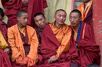 Nyingmapa monks enjoy watching the Monlam Chenmo dances, Katok Dorjeden Monastery _ Kham, Tibet, Sichuan, China