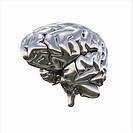 Chrome Brain _ Ansicht halb rechts