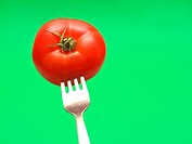 fresh tomato on fork with green background