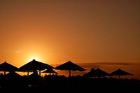 sunshine on beach with beach umbrellas silhouette