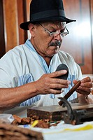 older senior man making luxury handmade cuban cigare