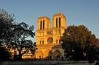 Notre Dame Cathedral, Ile de la Cite, Paris, Ile-de-France region, France, Europe