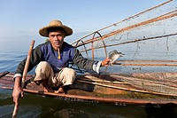 Myanmar, Burma  Fisherman and Fish, a Meager Catch  Inle Lake, Shan State