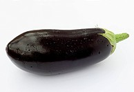 Freshly picked organic aubergine with water drops