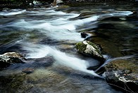 Blurred water flowing across moss covered rocks in river