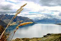 Lake Wanaka is located in the Otago region of New Zealand, at an altitude of 300 metres. Covering an area of 192 km2 74 sq mi,citation needed it is Ne...