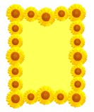beautiful yellow Sunflower frame
