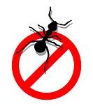 Forbidden to enter ants
