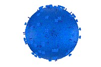 influenza virus model in blue