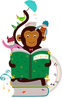 Reading a book monkey (thumbnail)