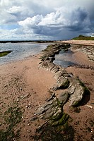 Rocks on the Beach and Stormclouds at Carnoustie Angus Scotland