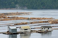 Lumber mill log storage, Telegraph Cove, Vancouver Island, British Columbia, Canada / rafting