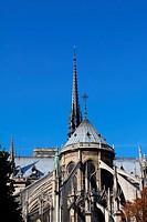 Notre Dame Cathedral _ Paris