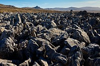 Stone runs, geology, West Point Island, Falklands Islands