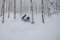 An alpine skier in fresh, deep powder snow