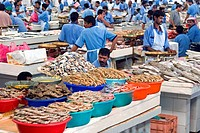 Fish Market, Dubai, United Arab Emirates, Middle East