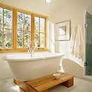 Bathtub on platform in front of window