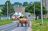 Amish man in old fashioned horse carriage on street in Intercourse Pennsylvania in Lancaster area of Amish country