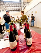 USA, Washington, Anacortes. Anacortes Spring Wine Festival featured over 30 wineries, like Montinore Estate, and six restaurants.