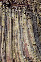 WY, Devils Tower National Monument, Rock climbers