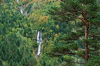 Autumn forest and waterfall at Bujaruelo Valley, Ordesa & Monte Perdido National Park, Huesca, Aragon, Spain