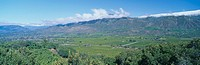 Orange groves and snowy mountains in the Ojai Valley, California
