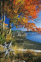 Lobster Village in Autumn, New Harbor, Maine