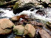 feelinsg expression waterfall