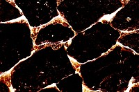 Close_up of burnt volcanic stone. Abstract textured background.