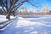 Park benches with snow in Central Park, Manhattan, New York City, NY after winter snowstorm