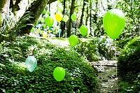 Balloons in a Forest