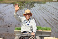 Farmer Rice Planting with Rice Planter