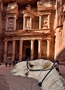 Al Khazneh The Treasury, Petra, Jordan  It is one of the most elaborate temples in the ancient Jordanian city of Petra  As with most of the other buil...