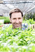 Germany, Bavaria, Munich, Mature man in greenhouse with rocket plants