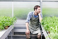 Germany, Bavaria, Munich, Mature man in greenhouse between rocket plant