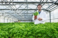 Germany, Bavaria, Munich, Scientist standing between parsley plant in greenhouse