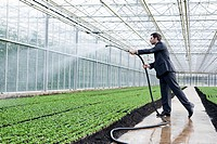 Germany, Bavaria, Munich, Mature man in greenhouse watering seedlings (thumbnail)