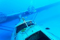 Wwii us catalina flying boat sunk for scuba divers in 1962 near papeete, tahiti nui south pacific