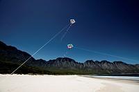 2 kites on a beach