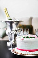Still life of cake and champagne