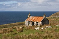 Abandoned croft, Wester Ross, Highlands, Scotland, United Kingdom, Europe