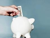 Hand putting dollar in piggy bank