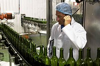 Man working in a wine bottling factory